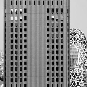 Cityscape Tokyo DSCF1235