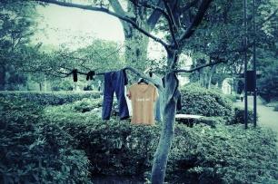 Habitat - Laundry