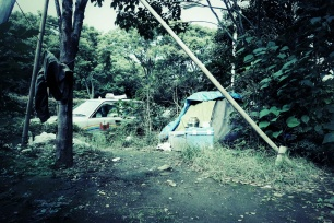 Habitat - Roadside dwelling