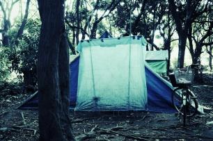 Habitat - Blue tents
