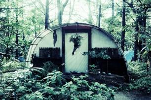 Habitat - Japanese garden