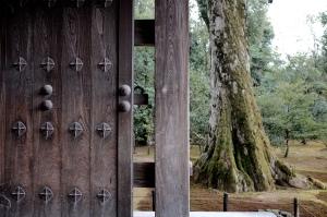 Kyoto — 26