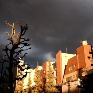 Cityscape Tokyo DSCF5574
