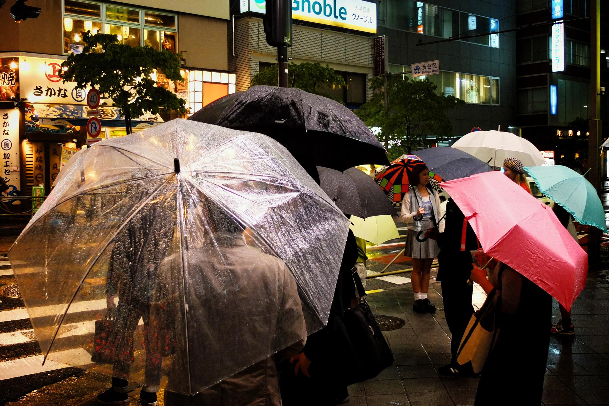 Tokyo Umbrellas
